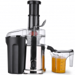 The Top Masticating Juicers